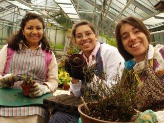 정원에서 일하는 여성